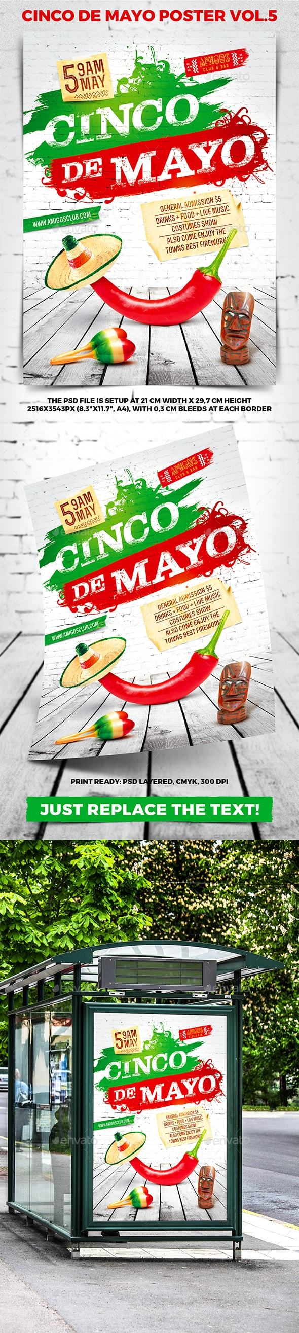 Cinco de Mayo Party Poster vol.5 - Holidays Events