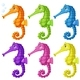 Seahorses in Six Colors