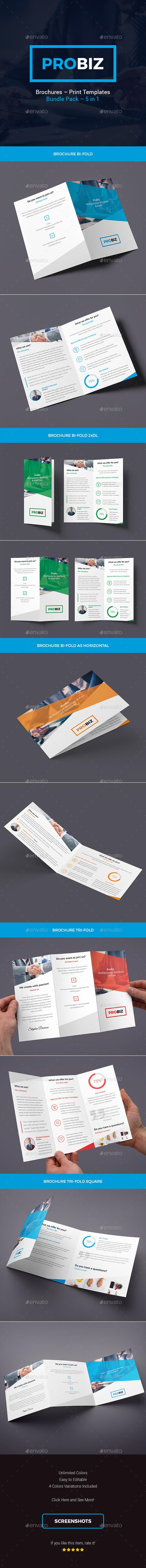 ProBiz – Brochures Print Templates Bundle – 5 in 1 - Corporate Brochures