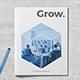 Grow. Company Profile - GraphicRiver Item for Sale