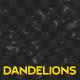 Dandelion Overlay - VideoHive Item for Sale