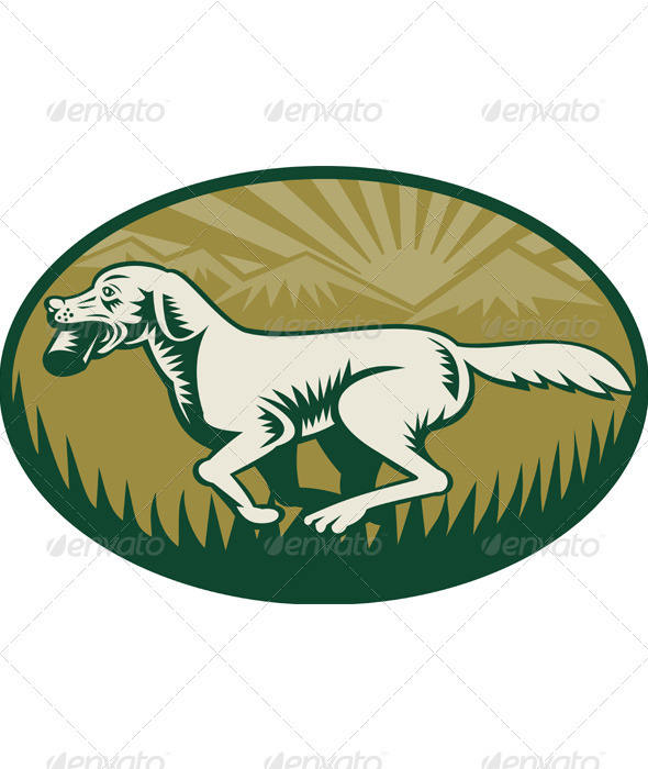 Golden Retriever Hunting Dog Running - Animals Characters