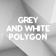 10 Different Grey and White Polygon Backgrounds - GraphicRiver Item for Sale