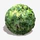 Dense Jungle Leaves Seamless Texture