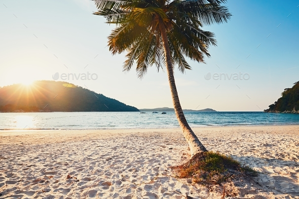 Sunset in paradise - Stock Photo - Images