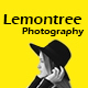 Lemontree - Photography & Portfolio WordPress Theme