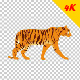 4K Tiger Walk Cycle - VideoHive Item for Sale
