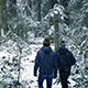 People Walk Through Forest In Snowfall - VideoHive Item for Sale