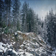 Rocky Forest Slope In Heavy Snowfall - VideoHive Item for Sale