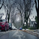 Winter Suburbia With Bare Trees Near Houses - VideoHive Item for Sale