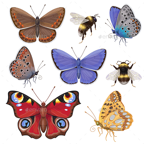 Set of Butterflies and Bumblebees - Animals Characters