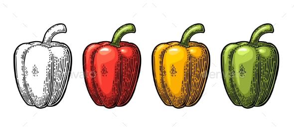 Sweet Bell Pepper - Food Objects
