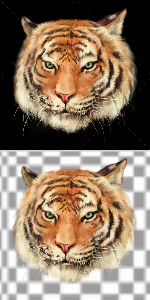 Royal Bengal Tiger - Illustrations Graphics