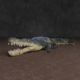 Crocodile - 3DOcean Item for Sale