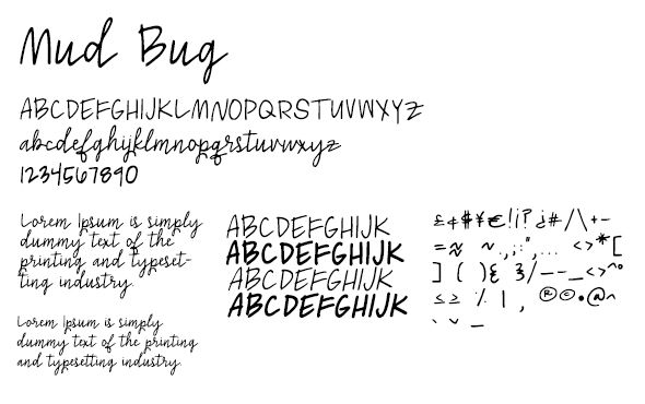 Mud Bug - Handwriting Fonts