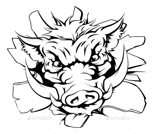 Boar Charging Through Background - Animals Characters