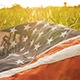 United States Flag USA - VideoHive Item for Sale