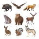 Cartoon Forest Animals Set - GraphicRiver Item for Sale