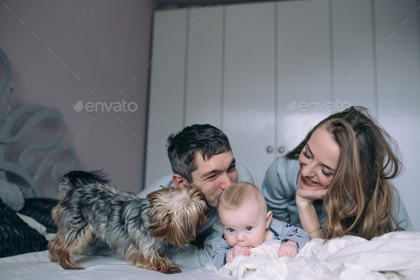 Family playing on bed in the bedroom - Stock Photo - Images