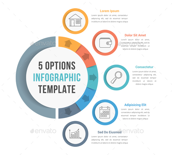 5 Options Infographic Template - Infographics