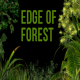 Edge of Forest - VideoHive Item for Sale