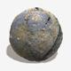 Mossy Beach Rock Seamless Texture