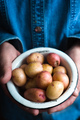 Metal bowl with raw potatoes in the hands