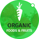 Organic Foods and Fruits PSD Template - ThemeForest Item for Sale
