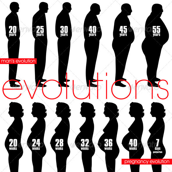 Men obesity evolution and pregnancy stages - People Characters
