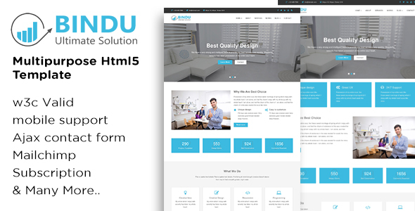 BINDU - Multipurpose HTML5 Template - Business Corporate