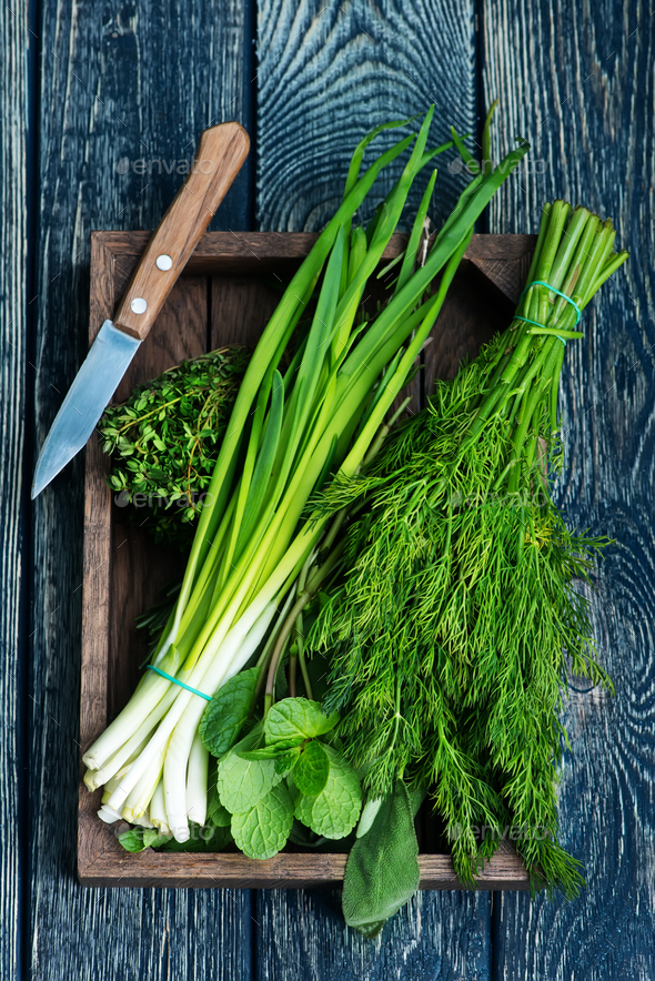 fresh greens - Stock Photo - Images