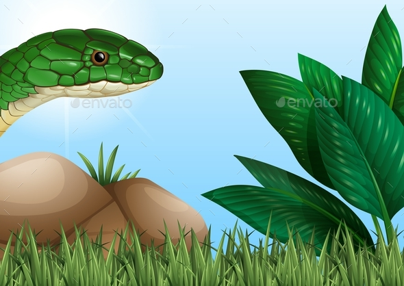 Snake Crawling in the Garden - Animals Characters