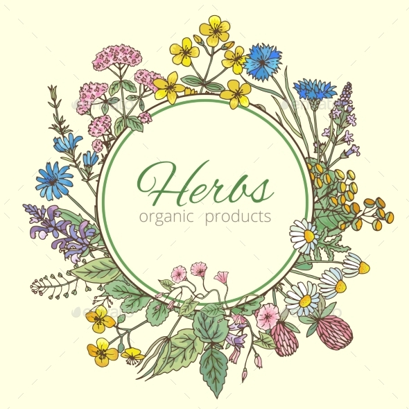 Illustration in Circle Shape of Herbs - Organic Objects Objects