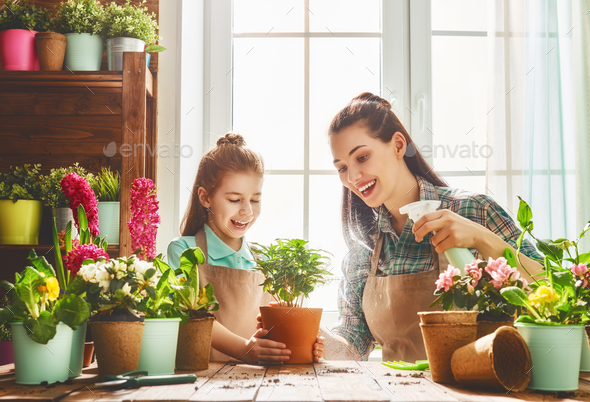 Happy family in spring day. - Stock Photo - Images