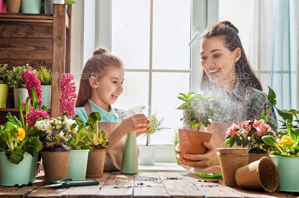 Mom and daughter engaged in gardening - Stock Photo - Images