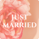 The Wedding Day - Wedding & Wedding Planner Nulled
