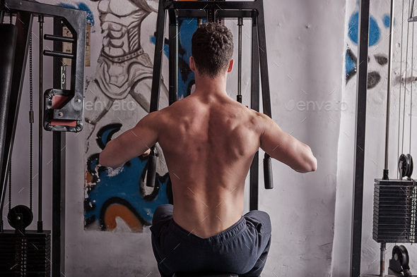 Athletic bodybuilder exercising in the gym - Stock Photo - Images