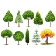 Set of Different Types of Trees - GraphicRiver Item for Sale