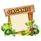 Organic Sign with Mixed Vegetables - GraphicRiver Item for Sale