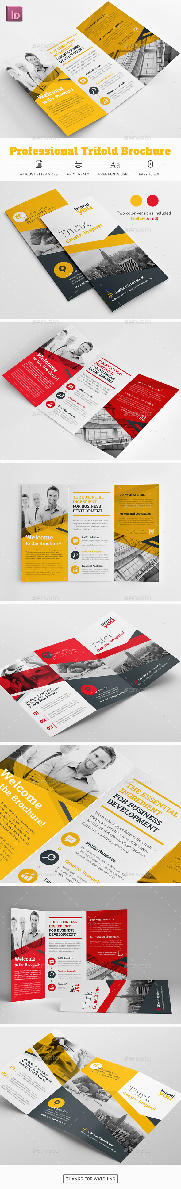 Professional Trifold Brochure - Corporate Brochures