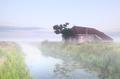 farmhouse by river in fog
