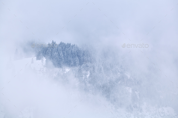 mountain top in winter fog - Stock Photo - Images