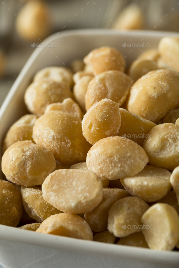 Roasted Macadamia Nuts with Sea Salt - Stock Photo - Images