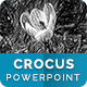 Crocus – Multipurpose PowerPoint Template - GraphicRiver Item for Sale