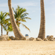 Tropical beach - PhotoDune Item for Sale