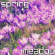 Spring Meadow - VideoHive Item for Sale