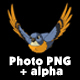 Blue Bird Flies. Front View - VideoHive Item for Sale