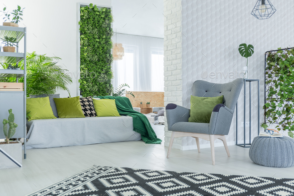 Living room with sofa and armchair - Stock Photo - Images