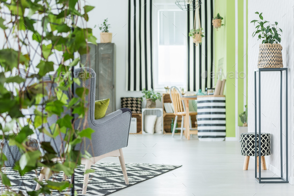 Trendy apartment with green plants - Stock Photo - Images