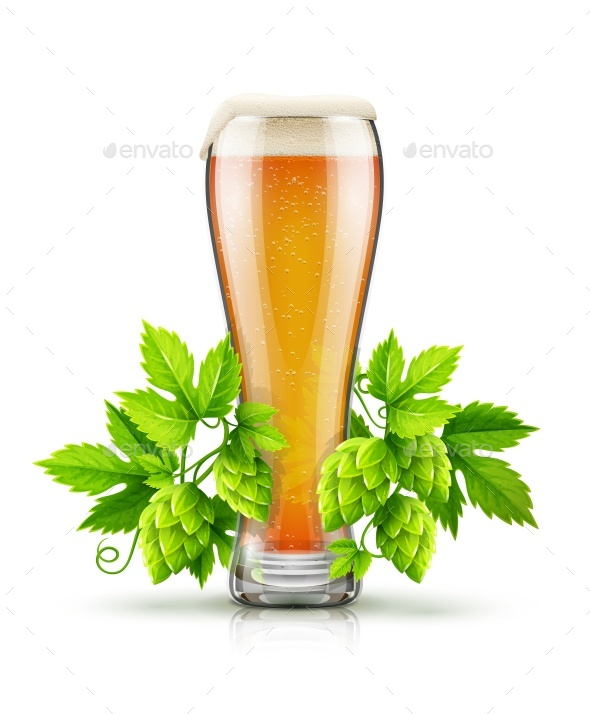 Glass of Light Lager Beer with Hop Plant Buds - Food Objects
